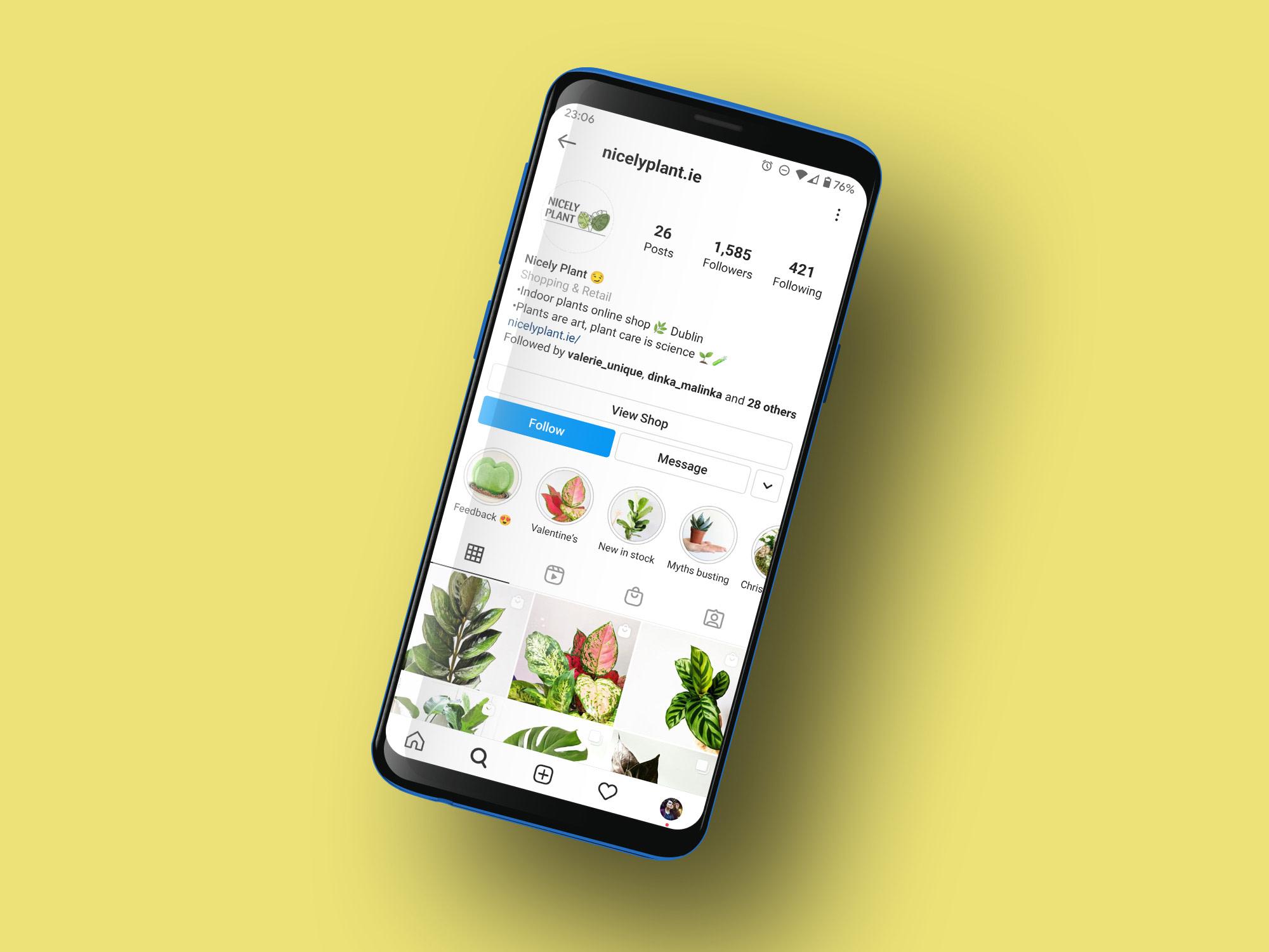 Nicely Plant Instagram